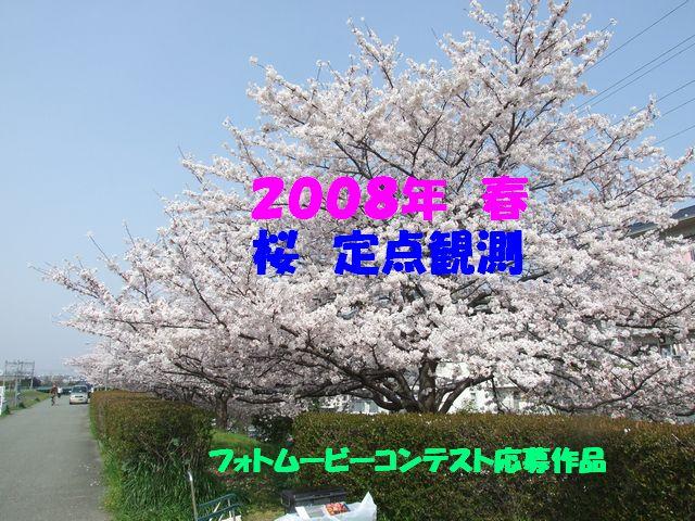 Dscf0524t